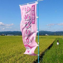 北海道 砂川特栽ゆめぴりか【玄米】5㎏|29年産