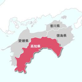 早期米|高知産コシヒカリ 【玄米】5㎏|令和2年産