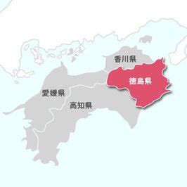 早場米|徳島産コシヒカリ 【玄米】5㎏|令和2年産