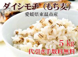【TV放映】幻もち麦(ダイシモチ)5kg 純国内産