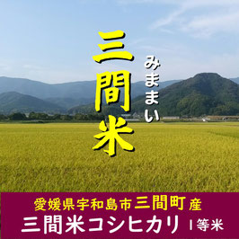 四国・愛媛|三間米コシヒカリ【玄米】5kg|令和2年産