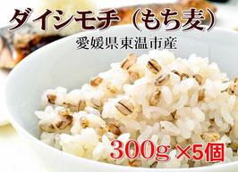 【TV放映】幻もち麦(ダイシモチ)300g×5個セット 純国内産