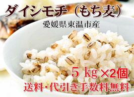 幻もち麦|プレミアム ダイシモチ 5kg×2個セット|愛媛県産