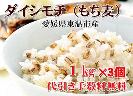 幻もち麦|プレミアム ダイシモチ 1kg×3個セット|愛媛県産