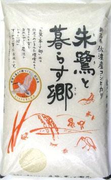 無農薬栽培 朱鷺と暮らす郷 コシヒカリ【玄米】5㎏