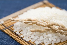 徳島県阿南産コシヒカリ 【玄米】5㎏ 令和元年産