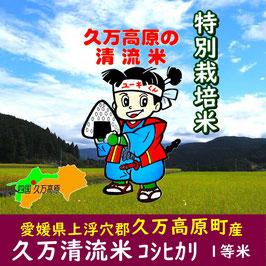 四国・愛媛|久万清流米コシヒカリ【玄米】5㎏|令和2年産
