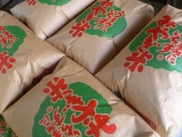 宮城登米産・特栽ササニシキ【玄米】5㎏|令和2年産