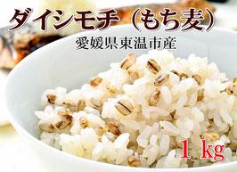 幻もち麦|プレミアム ダイシモチ 1kg|愛媛県産