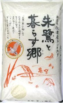 佐渡|特栽朱鷺と暮らす郷 コシヒカリ【玄米】5㎏