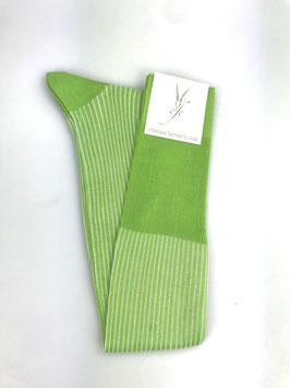 Kniestrümpfe grasgrün/weiss/gestreift