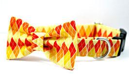 Barktober Orange & Yellow Collar