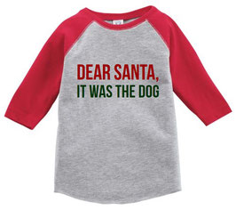 Dear Santa, It Was the Dog Toddler Raglan