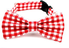 Gingham Style Red and White Collar & Bow Tie