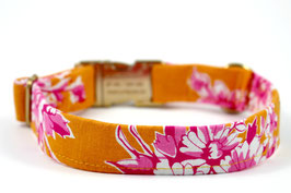 Daisy Me Rollin' Orange Gold Chrome Collar