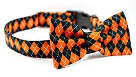 Barktober Black & Orange Collar + Bow Tie