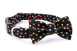Confetti Black Bow Tie + Chrome Collar