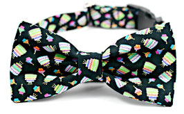 Pupcake Pawty Black Collar Set