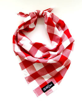 Check One Two Red & White Knotted Bandana