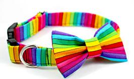 Pride Collar & Bow Tie