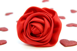 A Rose is but a Rose Red Flower