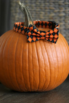 Barktober Black & Orange Bow Tie