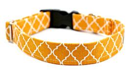 Orange Jax Collar-BLOWOUT SALE