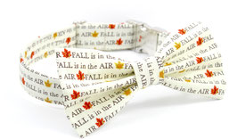 Fall is in the Air Collar & Bow Tie