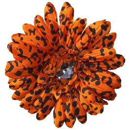 Ch-Ch-Cheetah Orange Flower