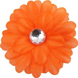 Neon Orange Daisy Doo Flower