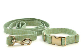Seafoam Chrome Collar & Leash Set