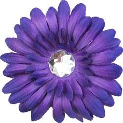 Purple Daisy Doo