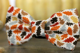 Leave It Bow Tie