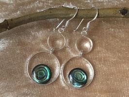 Abalone Ohrhänger, gefasst in 925 Sterlingsilber OR 026