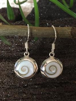 Shiva Auge (Operculum) Ohrringe, gefasst in 925 Sterlingsilber OR 029