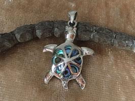 Abalone 'Schildkröte', gefasst in 925 Sterlingsilber AH 049