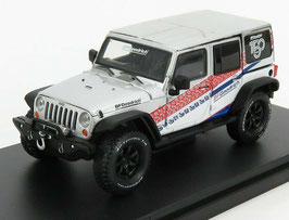 "Jeep Wrangler Unlimited 2017 ""BF Goodrich silber met. / Decor"""