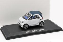 Smart fortwo Cabriolet A453 seit 2016 matt-weiss / silber
