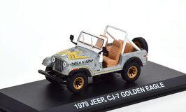 Jeep CJ-7 1976-1980 Aluminium / Decor