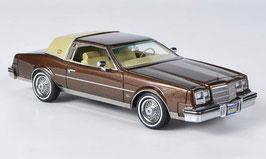 Buick Riviera 1981-1985 braun met. / beige