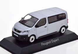 Peugeot Expert Bus seit 2016 silber met. / schwarz