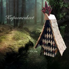 KK  Kapsoneskeet nestkastje, handbeschilderd