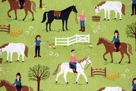 Horse rinding