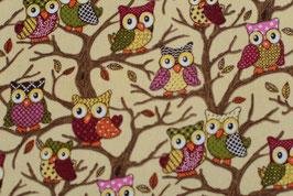 Owls sitting on a tree