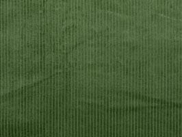 Cord kiwi (thick)