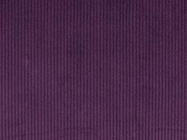 Breitcord lila