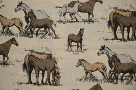 Pferdefamilie