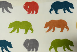 Bears colourful