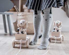 Hund mit Xylophon