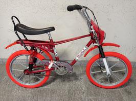 Bicicletta Mondiale (tipo Saltafoss)